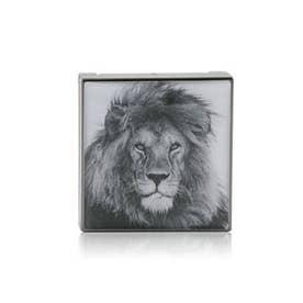 アイシャドウ ルミネッセント アイシェード - # Lion (ゴールデンコッパー)