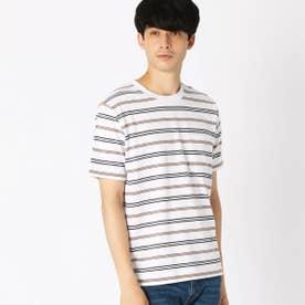 《吸水速乾》 ボーダー Tシャツ  (ホワイト)