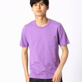 カラーTシャツ (パープル)