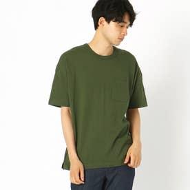 日本の伝統色(R) コラボTシャツ (グリーン)