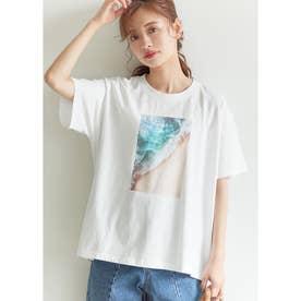 サイドスリットロゴTシャツ (E)