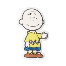 Peanuts Charlie Brown (MULTI)