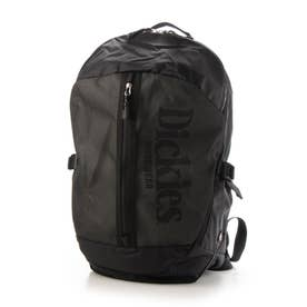 Dickies/SEETHROUGH LOGO BACKPACK バックパック 14740200 (グレー)