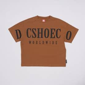 DC/キッズ Tシャツ YST212515 (ブラウン)