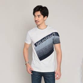 Tシャツ半袖 DAVID (ホワイト)