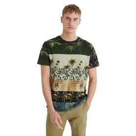 メンズ Tシャツ半袖 DAVID (グリーン)