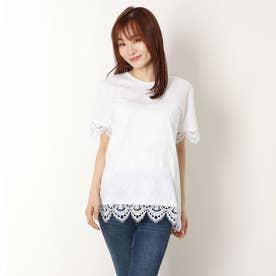 Tシャツ半袖 GANTE (ホワイト)