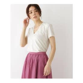 ◆AURALEE VネックTシャツ (グレー(012))