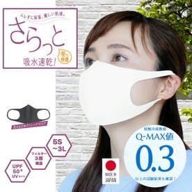洗える3D立体マスク (アイスグレー)【返品不可商品】