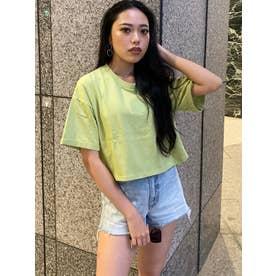 刺繍ボックスロゴTシャツ (LIME)