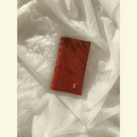 ESモチーフiPhoneフリップケース 12/12PRO (BROWN)