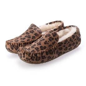 Cairns Leopard (Chestnut)