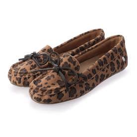 Odessa Mini Leo CC (Leopard)