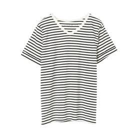 VネックTシャツ (Border Ivory)