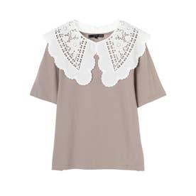 SUGAR SPOON SET2点レースカラー×Tシャツ (Mocha)