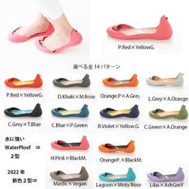 FS (H.Pink×M.Rose)