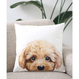 Miart × コラボ クッションカバー ペットデザイナー 犬 猫 (ホワイト系その他6)
