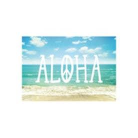 ◆プチプラ 【kahiko】ハワイアンポストカード その他10
