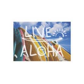 ◆プチプラ 【kahiko】ハワイアンポストカード その他13