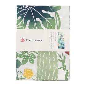 【カヤ】kenema 気音間 けねま / 注染 夏の風物詩 手ぬぐい その他1