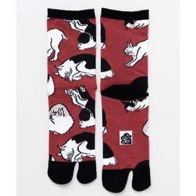 【カヤ】足袋型くつ下23-25cm 浮世絵の猫 エンジ