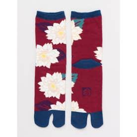 【カヤ】足袋型くつ下23~25cm 葉菊 パープル