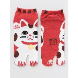 【カヤ】赤招き猫 足袋型くつ下23~25cm その他1