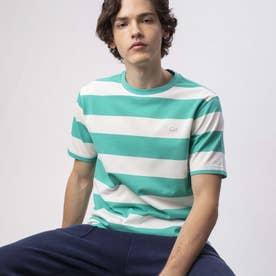 ビックボーダーTシャツ (グリーン)