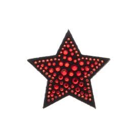 スタースワロ 刺繍ブローチ (レッド)