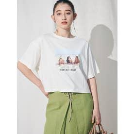 BEVERLY HILLS ショートTシャツ(ライトミックス)