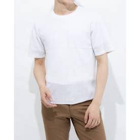 半袖ニット (ホワイト)