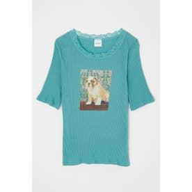 BE LOVED DOG Tシャツ L/BLU1