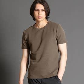 タックボーダーTシャツ (13ブラウン)