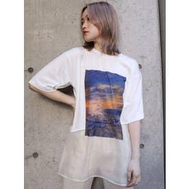 シアードッキングTシャツ(ホワイト)