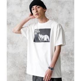 KENJI KUBOフォトTシャツ Bernard ホワイト
