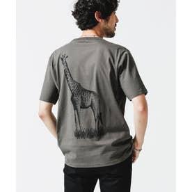 WWF ANIMAL Tシャツ 半袖 1 スミクロ1