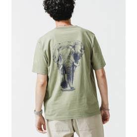 WWF ANIMAL Tシャツ 半袖 1 L.カーキ1