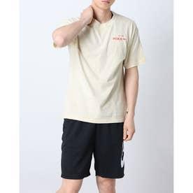 メンズ 半袖Tシャツ ナイキSB CRUISIN S/S Tシャツ DD1288-212 (ベージュ)