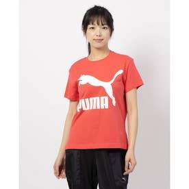 CLASSICS ロゴ SS Tシャツ (HIBISCUS)