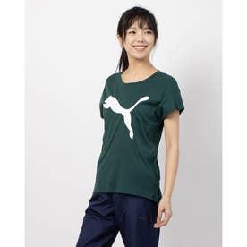 ACTIVE ロゴ SS Tシャツ (PONDEROSA PINE)