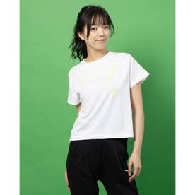 EVOSTRIPE SS Tシャツ (WHITE)