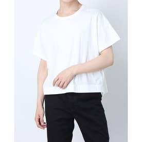 コットンTシャツ (ホワイト)