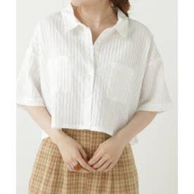 ストライプショートシャツ (オフ白)