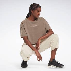 レズミルズR ナチュラルダイ クロップドTシャツ / Les MillsR Natural Dye Cropped T-Shirt (グレー)