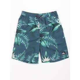 【Quiksilver】POOLSIDER VOLLEY YOU【返品不可商品】 (BSM6)