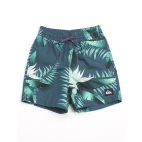 【Quiksilver】POOLSIDER VOLLEY BOY【返品不可商品】 (BSM6)