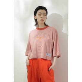 <RUSSELL ATHLETIC×CREOLME>クロップドボーダーTシャツ オレンジ