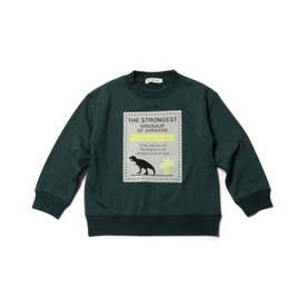 【90-130cm】裏シャギーロゴフロッキー恐竜トレーナー (ダークグリーン)