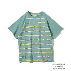 【JR】列車ボーダーラグランTシャツ (グリーン)