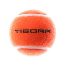 硬式テニス ノンプレッシャーボール 2015020700